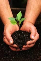средства защиты растений и микроудобрений