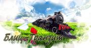 Транспортно- экспедиторская компания БЛИЦ- ТРАНЗИТ