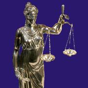 Представительство в государственных органах,  обжалование их действий и