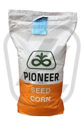 Семена кукурузы Пионер (Piоnner )