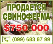Продам действующий свинокомплекс 2700 кв.м. с. Покровское.