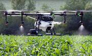 Услуги агродрона мультикоптера в сельском хозяйстве