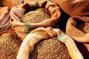 Зерновози для перевезення зерна Україна