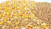 Предлагаем продать зерновые
